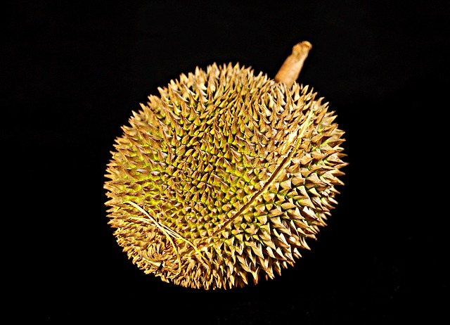 what is benefits of durian for health