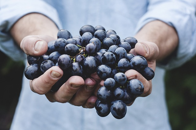 What is benefits of grape fruit for health?