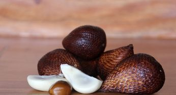Benefits of salak or snake fruit for health, beauty and Diet
