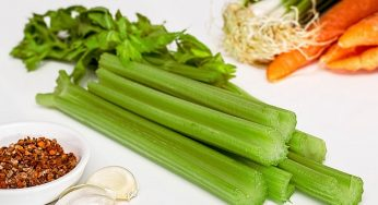 What is benefits of Celery for health?