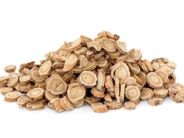 benefits of astragalus root for health