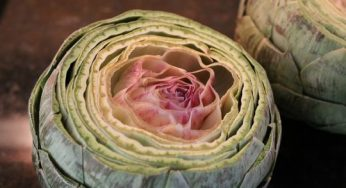 What are benefits of artichoke for health?