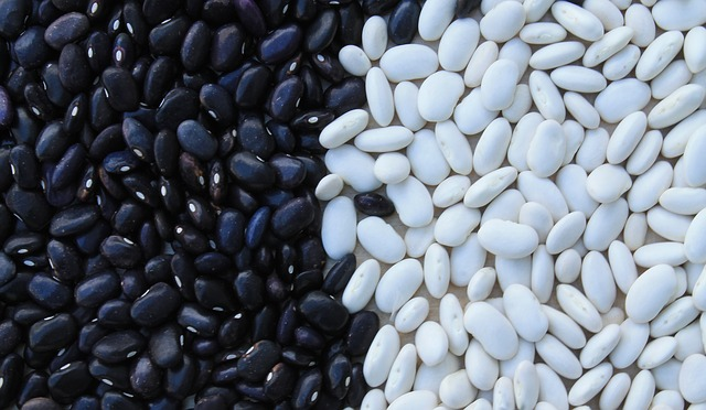 benefits of black bean for health